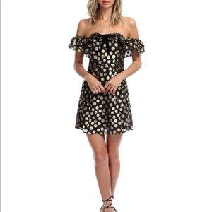 For love and lemons Lottie Ruffle Mini Dress